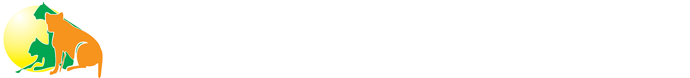 Ashford Tours & Travel Ltd